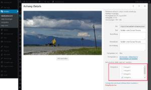 Zuordnen eines Bildes zu einer Custom Taxonomy in der Grid-Ansicht der Medien-Bibliothek