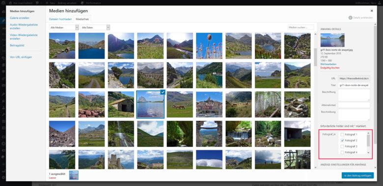 Bildzuordnung zu einer Custom Taxonomy im Media Library Modal