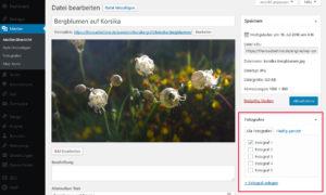 Bearbeiten eines Bildes mit einer Custom Taxonomy für Attachments